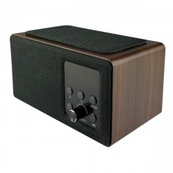 Wireless Speaker with FM Radio and Alarm Clock