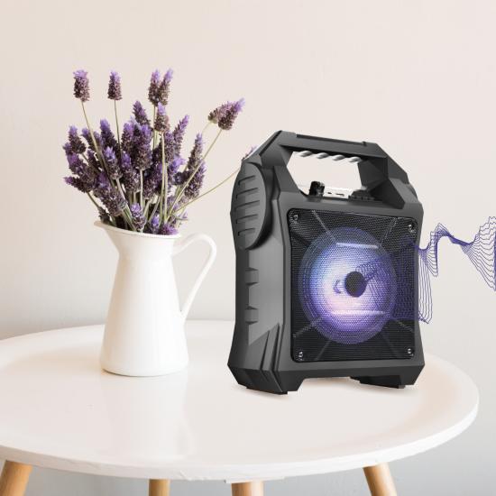 """Drahtloser Lautsprecher mit Radio, TWS kompatibel eingebauter Batterie, sw, """"Party II"""""""